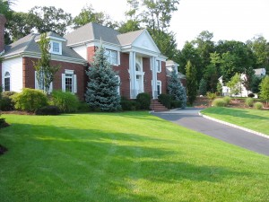 Lawn Care Waterbury CT