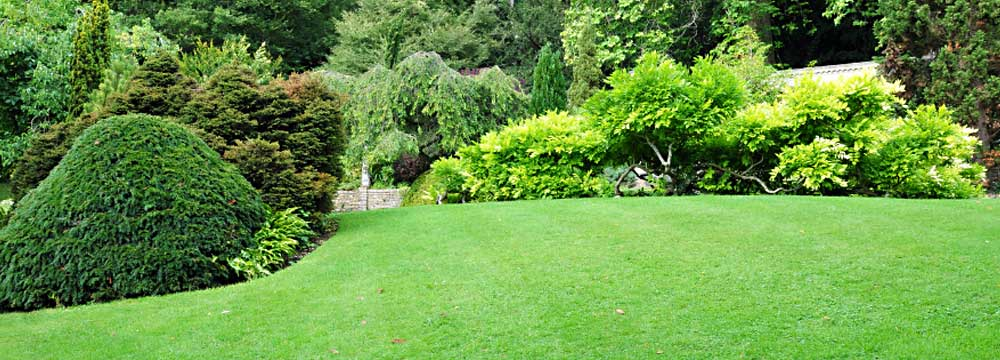 Lawn Care Cheshire CT - KC Landscaping