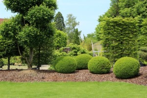 Landscaping Bethany CT