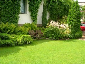 Landscaping Southbury CT