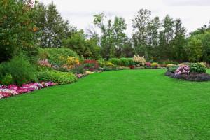 Landscaping Watertown CT