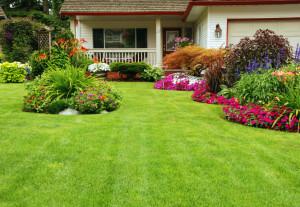 Landscaping Woodbridge CT