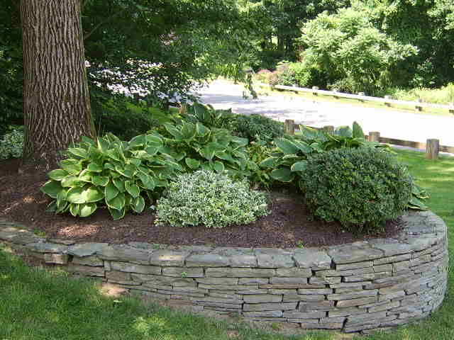 Softscaping with shrubs, mulch, and flowers